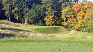 LAWSONIA LINKS PHOTO